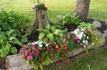 Идеи для клумбы своими руками фото – Цветники и красивые клумбы на даче своими руками: советы для начинающих, идеи и фото для опытных садоводов