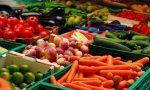 С чего начать овощной бизнес – Как начать аграрный бизнес (декабрь 2018) — как открыть с нуля, примеры и готовый план с расчетами для начинающих