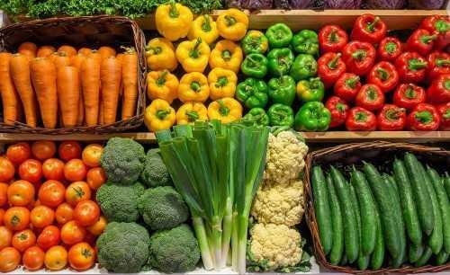 Бизнес план овощи оптом частный бизнес идеи